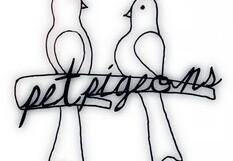 Hellapigeons Community Festival @ Griffith Park – 9 am/FREE