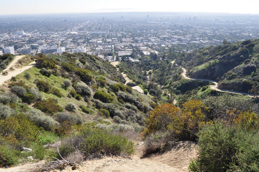 runyon-canyon